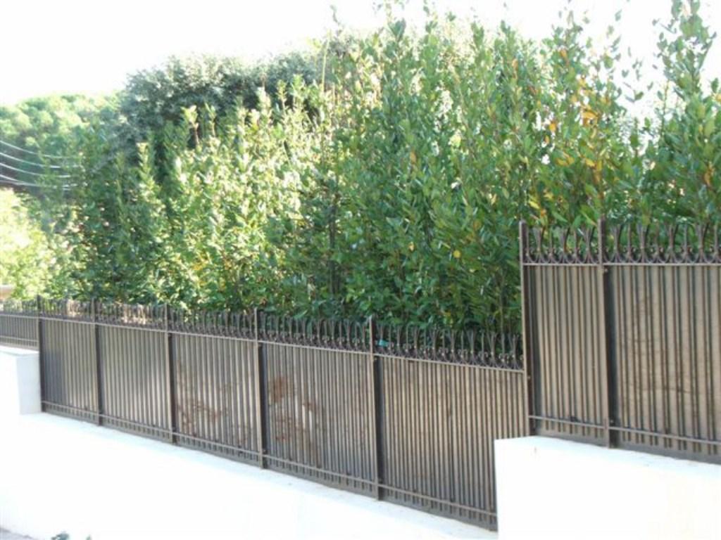 Gard din fier forjat cu tabla
